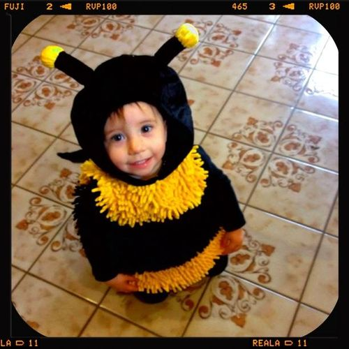 Addi Bumble Bee